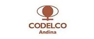 codelco_andina